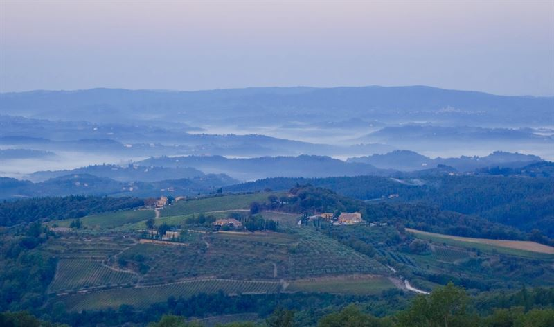Chianti Morning Fog